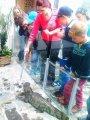 25. 5. 2015 -  Ekocentrum Ostrov, žáci 4. - 5. ročníku