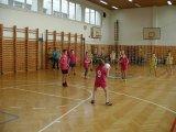 11. 2. 2016 - okrskové kolo v přehazované, žáci 3. - 5. ročníku, 2. místo