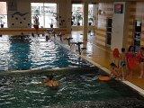 25. 4. 2016 - plavecký výcvik, žáci 3. a 4. ročníku