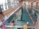 plavecký výcvik - žáci 4. ročníku