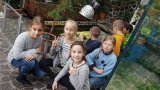 9. 10. 2019 - v rámci DFF Ekocentrum Ostrov, žáci 2. ročníku