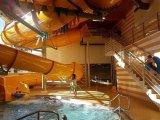 plavecký výcvik - žáci 5. ročníku, KV Aréna